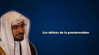 delices-prosternation