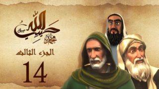 habibullah_3_14