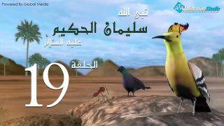 soulayman_al_hakim_19